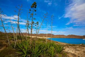 playa-los-genoveses-almeria